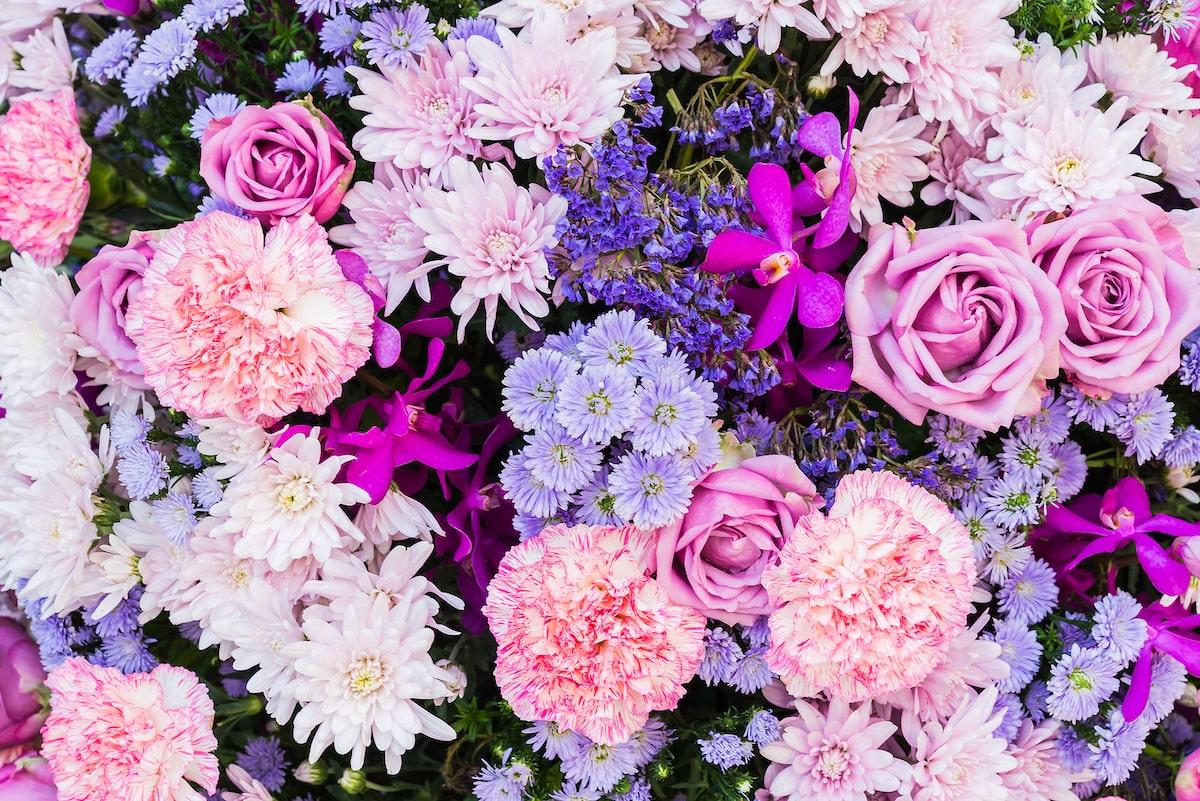 Las flores más apreciadas y sus significados